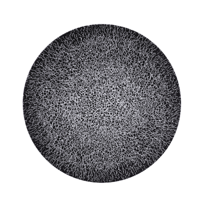 Life Speiseteller rund 28 cm Molecule Phantom Black